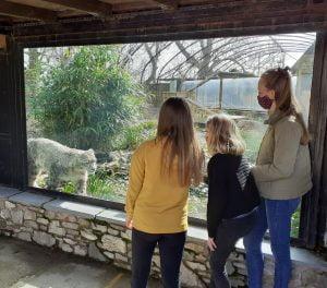Lakeland Wildlife Oasis 138