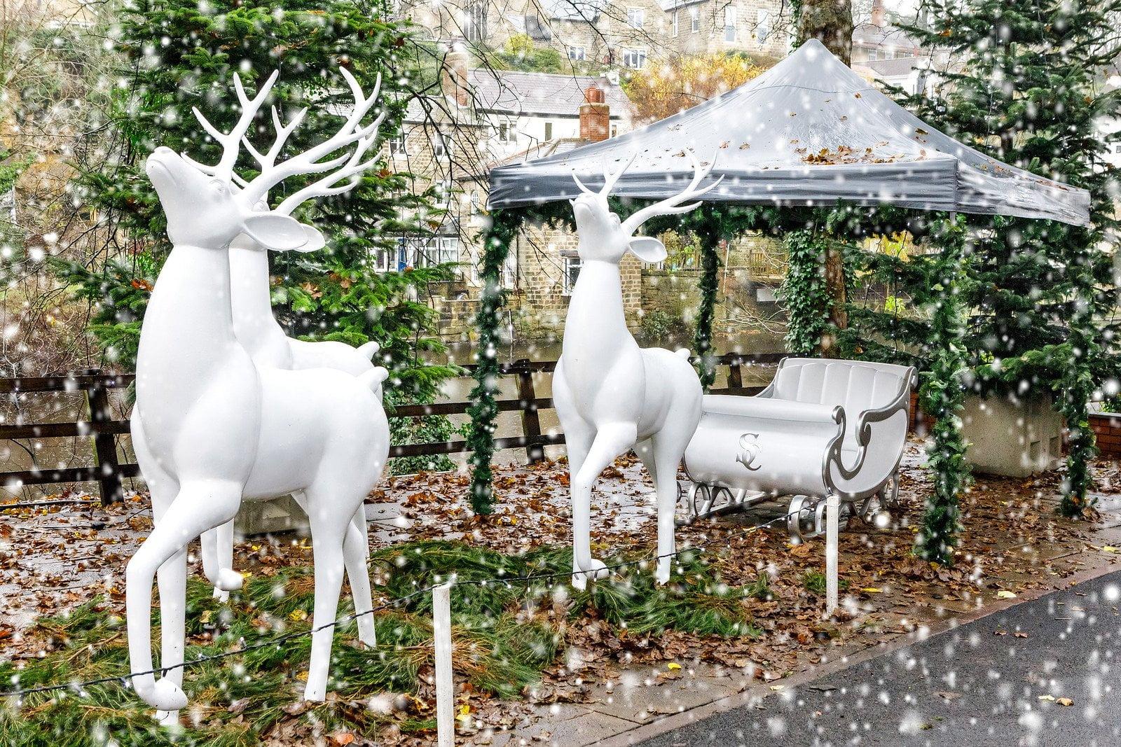 Christmas at Mother Shipton's