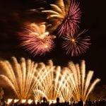 Fireworks Night 65