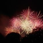 Bonfire and Fireworks 67