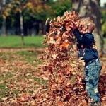 Autumn Half Term Fun 36
