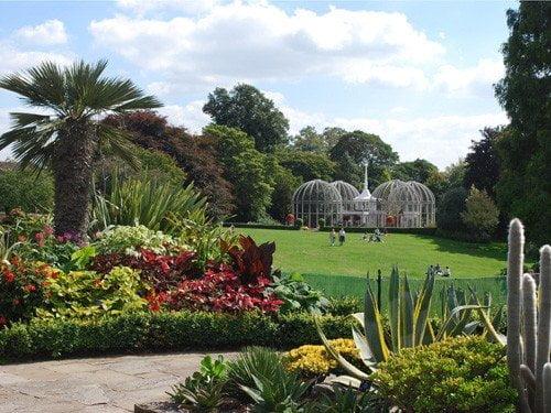 Birmingham Botanical Gardens 9