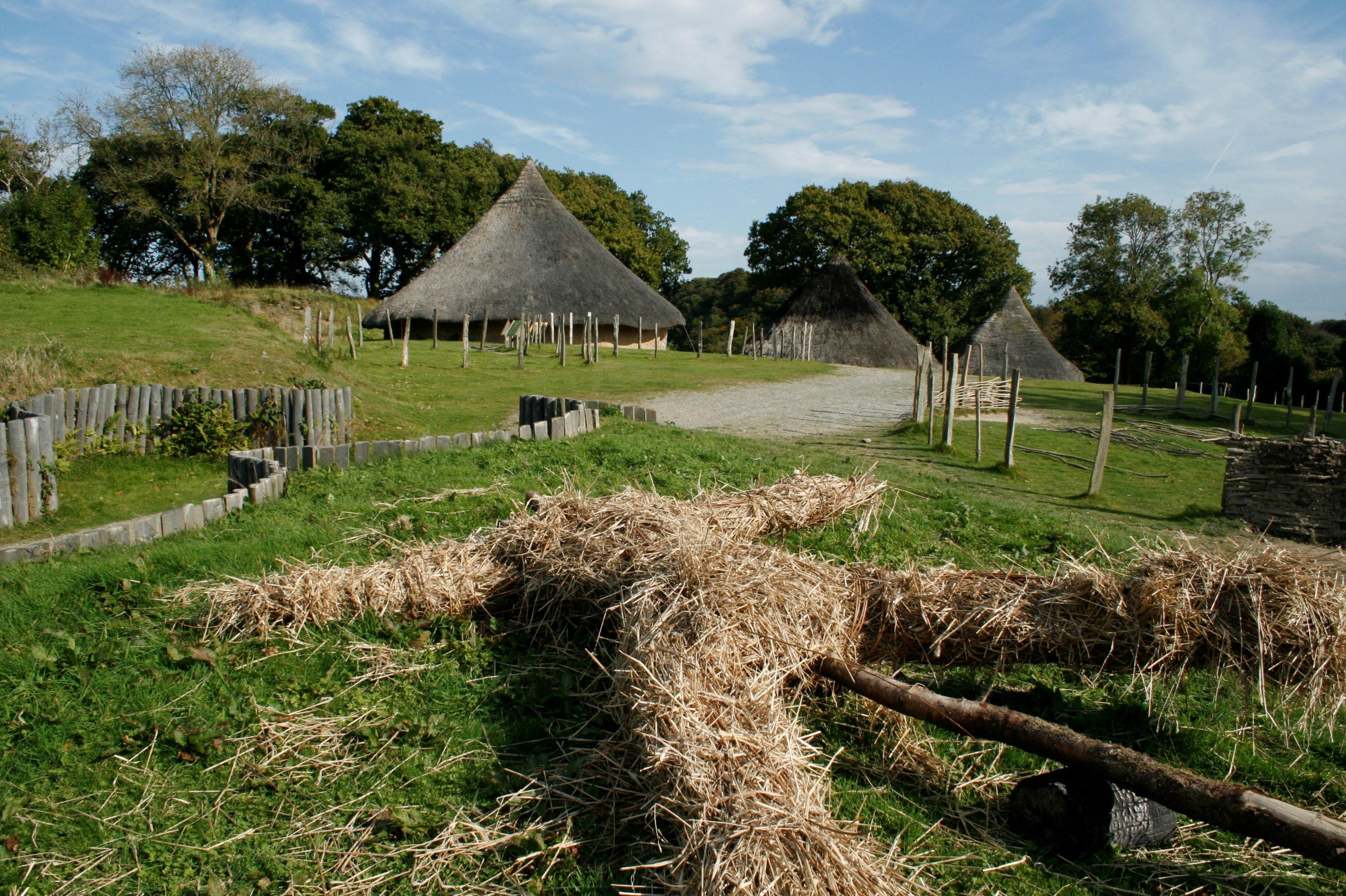 Castell Henllys Iron Age Village 6