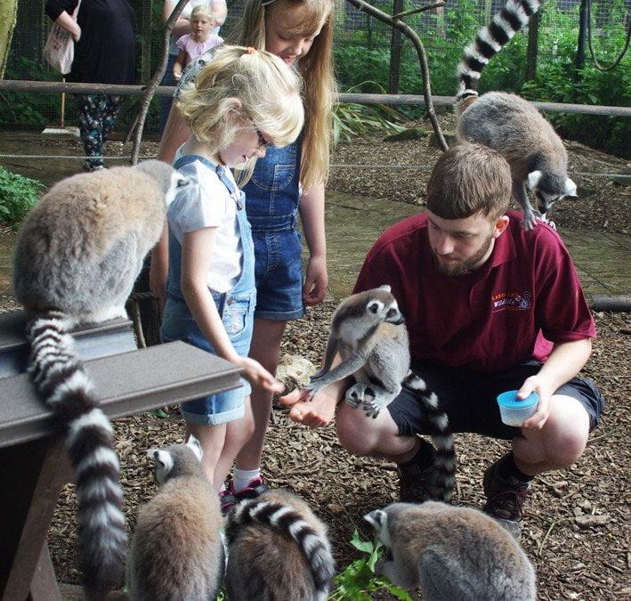 Lakeland Wildlife Oasis 4