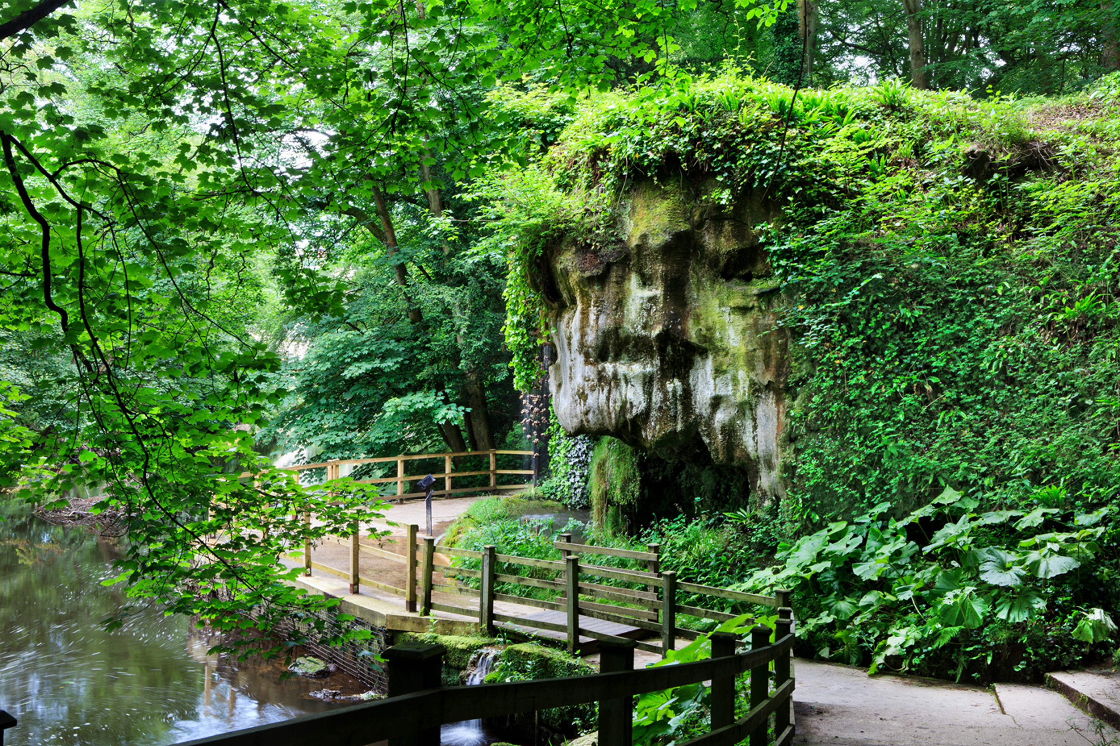 Mother Shipton's Cave 4