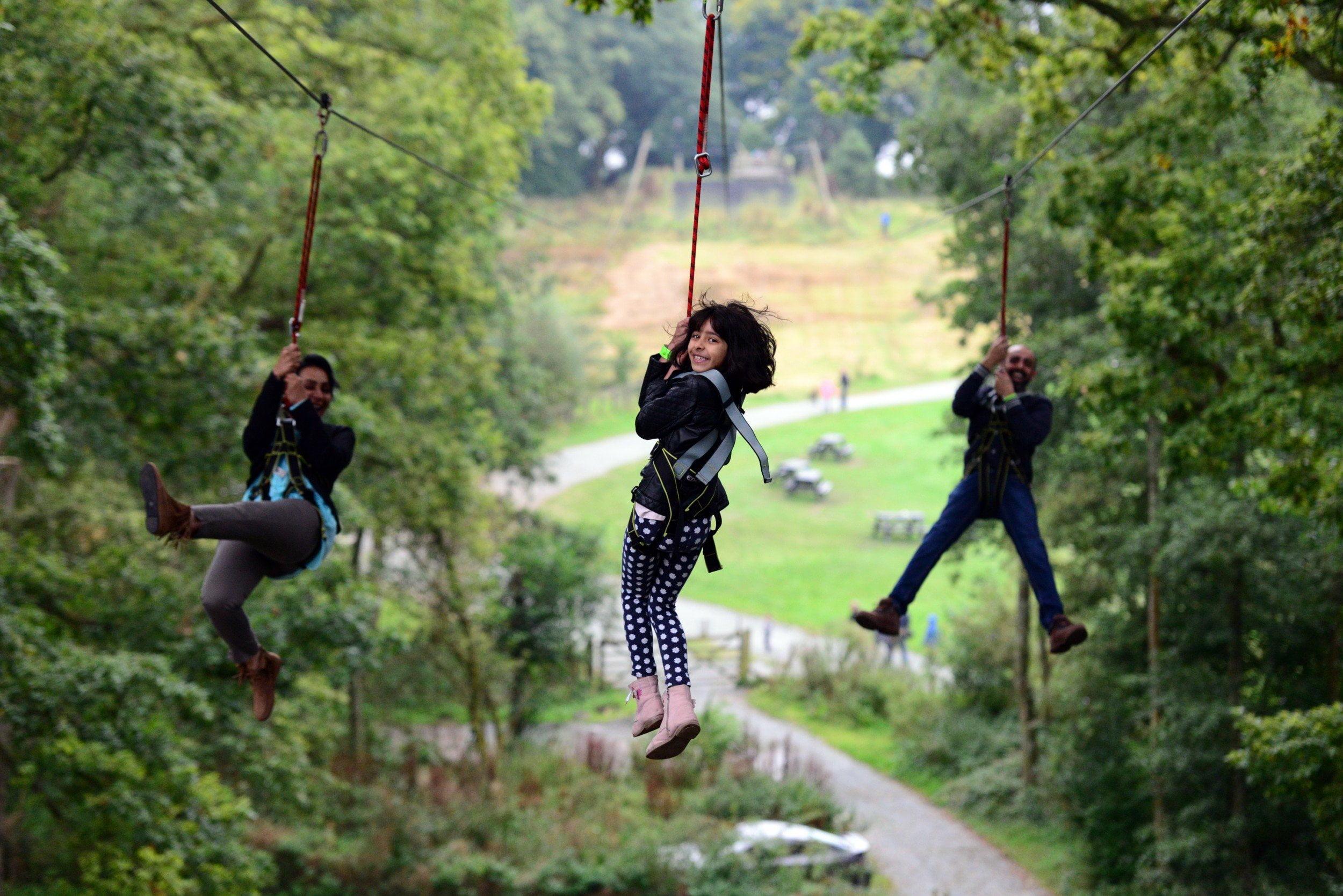Treetop Lake District 10