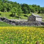 School Trip to the Yorkshire Dales 12